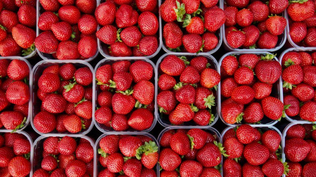 Strawberry Shakeology Recipes